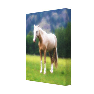 Dreamy Horse - Cream Palomino Canvas Print