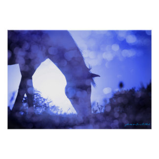 Dreamy Horse in Blue Poster