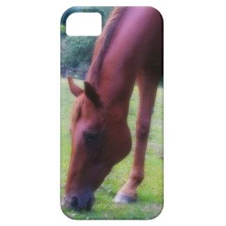 Dreamy Horse Softened Photo iPhone SE/5/5s Case