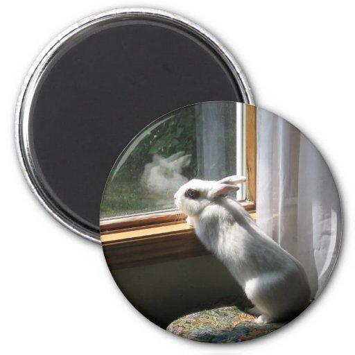 Dreamy Jimi 2 Inch Round Magnet