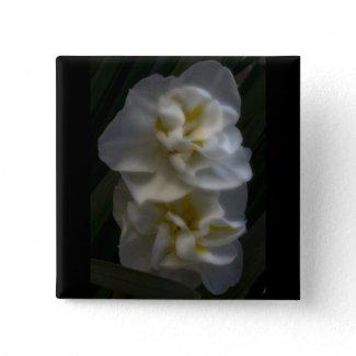 Dreamy Narcissus Daffodils zazzle_button
