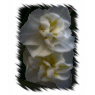Dreamy Narcissus Daffodils zazzle_shirt