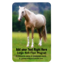 Dreamy Palomino Horse Painting Magnet