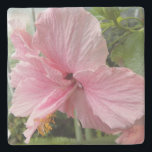 """Dreamy Pink Hibiscus Floral Stone Coaster<br><div class=""""desc"""">Protect your table top from water marks and stains with this decorative,  stone beverage coaster with cork backing that features the photo image of a dreamy,  pink Hibiscus flower. Select your coaster stone style. To see other products we have to offer,  click on the Northwestphotos store link.</div>"""