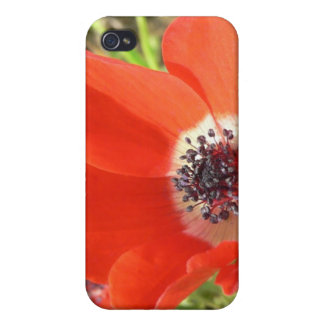 Dreamy Poppies iPhone Case