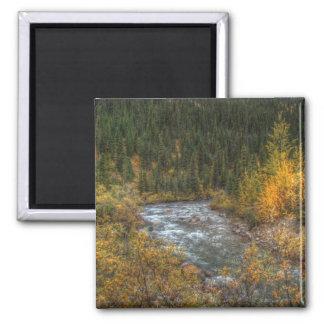 Dreamy River Magnet