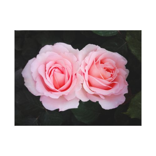 Dreamy Roses Canvas Print