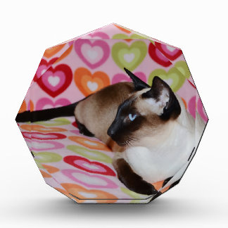 Dreamy Siamese Cat Hearts Award