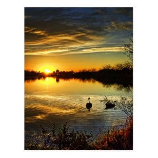 Dreamy Sunset Postcard