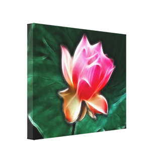 Dreamy Waterlily Floral Wrapped Canvas