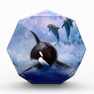 Dreamy Whale and dolphins Award