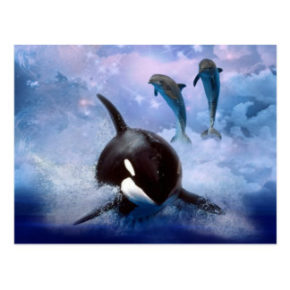 Dreamy Whale and dolphins play Postcard