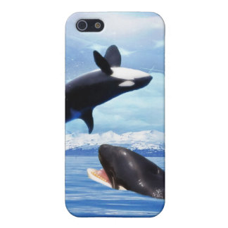 Dreamy Whales enjoying the ocean Case For iPhone SE/5/5s