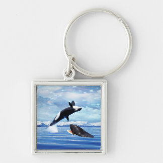 Dreamy Whales enjoying the ocean Silver-Colored Square Keychain