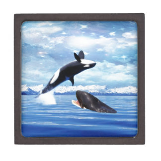 Dreamy whales in fun and play gift box