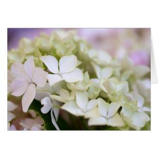 """Dreamy White Hydrangeas"" Card"