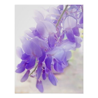 Dreamy Wisteria Purple / Violet Coloured Flower Poster