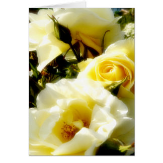 Dreamy Yellow Roses card