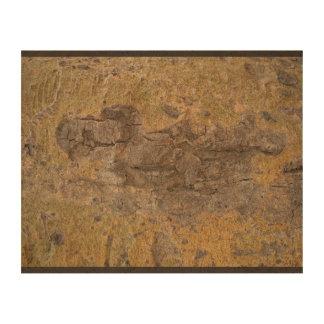 Dreemy Wood Queork Photo Print
