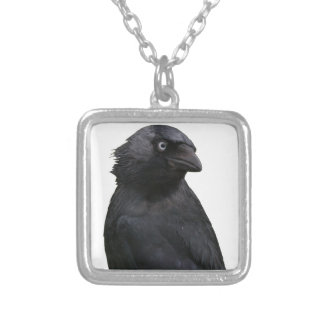 Drenched Jackdaw Square Pendant Necklace