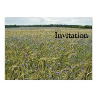 """Drente - campo de flor del maíz invitación 5"""" x 7"""""""