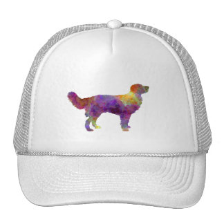 Drentsche Partridge Dog Trucker Hat