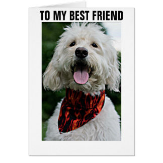 """DRESS UP FOR """"BEST FRIEND'S BIRTHDAY"""" CARD"""