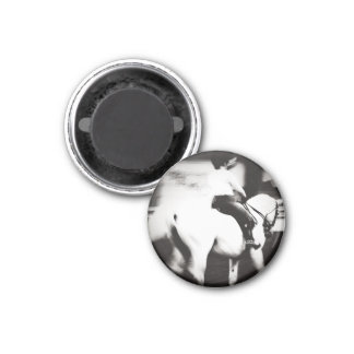 Dressage Abstract 1 Inch Round Magnet