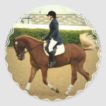 Dressage Extensions Stickers