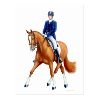 Dressage Half Pass Horse Postcard