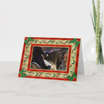 Dressage Horse Blank Christmas Card