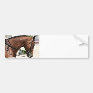 Dressage Horse Bumper Sticker