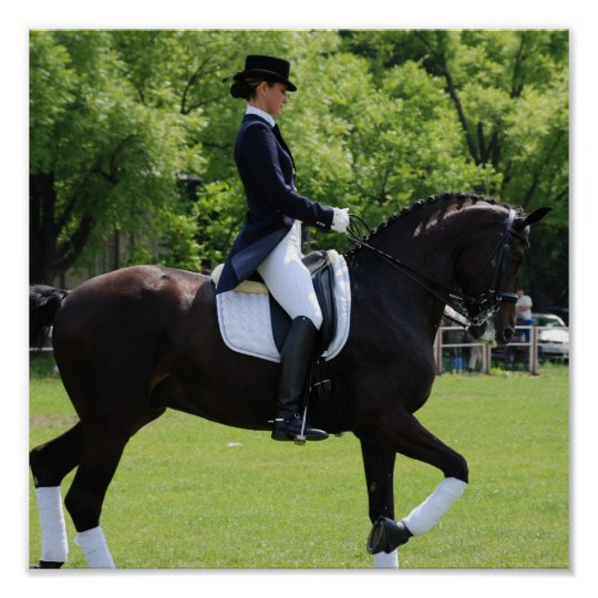 Dressage Horse Rider Canvas Print