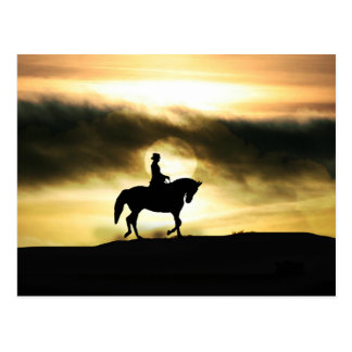 Dressage Rider in the sunset Postcard