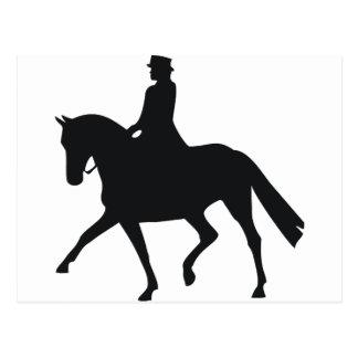 Dressage Rider Postcard