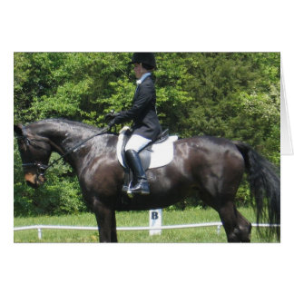 Dressage Show Ring Greeting Card