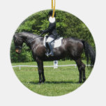 Dressage Show Ring Ornament