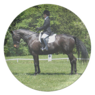 Dressage Show Ring Plate
