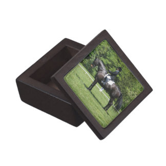 Dressage Show Ring Premium Gift Box