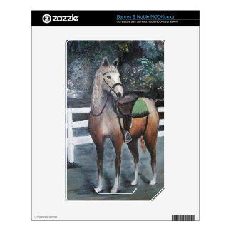 Dressed Horse NOOK Color Decals