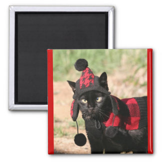 Dressed Up Black Kitty Cat Magnet