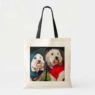 Dressed up dogs under umbrella bag