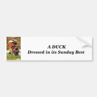 dressed up Duck Bumper Sticker