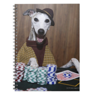 Dressed up Whippet dog at gambling table Notebook