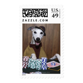 Dressed up Whippet dog at gambling table Stamp