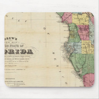 Drew's New Map Of The State Of Florida Mouse Pad