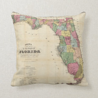 Drew's New Map Of The State Of Florida Pillow