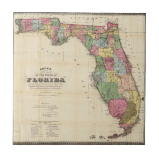 Drew's New Map Of The State Of Florida Tile