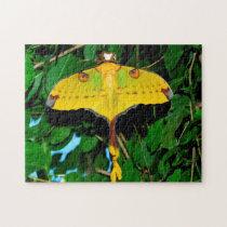 Drexel Butterfly. Jigsaw Puzzle