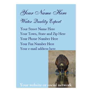 Dribbling Hawk Water Quality business card